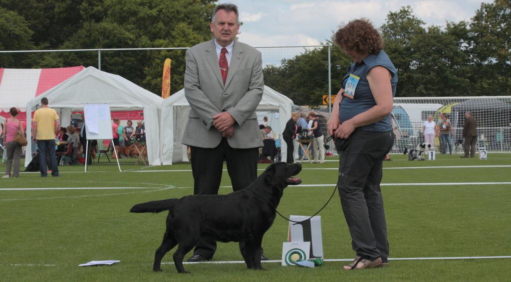 maggie jachthondenhow judge ganney
